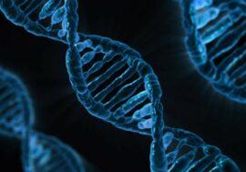 Генетики переименовали 27 генов человека из-за Microsoft Excel