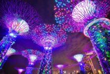 Жителям Сингапура будут платить за здоровый образ жизни