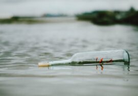 Стеклянные бутылки вредят природе больше, чем пластиковые