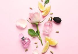 Британский парфюмерный бренд создал линейку ароматов по мотивам картин Ван Гога