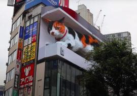 В Японии на торговом центре появился огромный мяукающий 3D-кот. Это билборд!